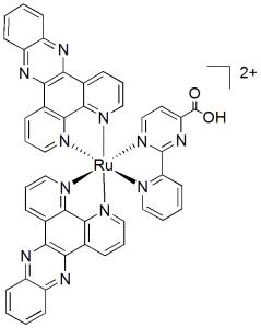 cytotoxicruii complex